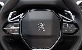 Peugeot3008